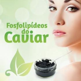 FOSFOLIPÍDEOS DO CAVIAR 300mg (30 Cápsulas)